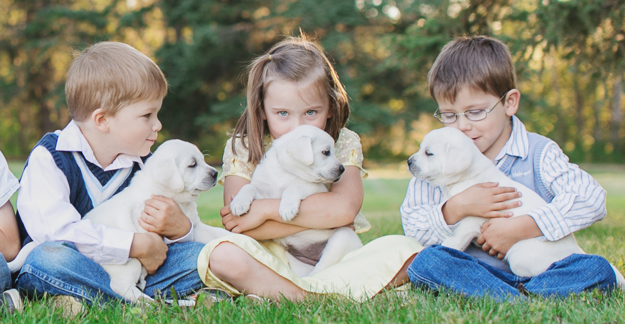 Ace Labradors children